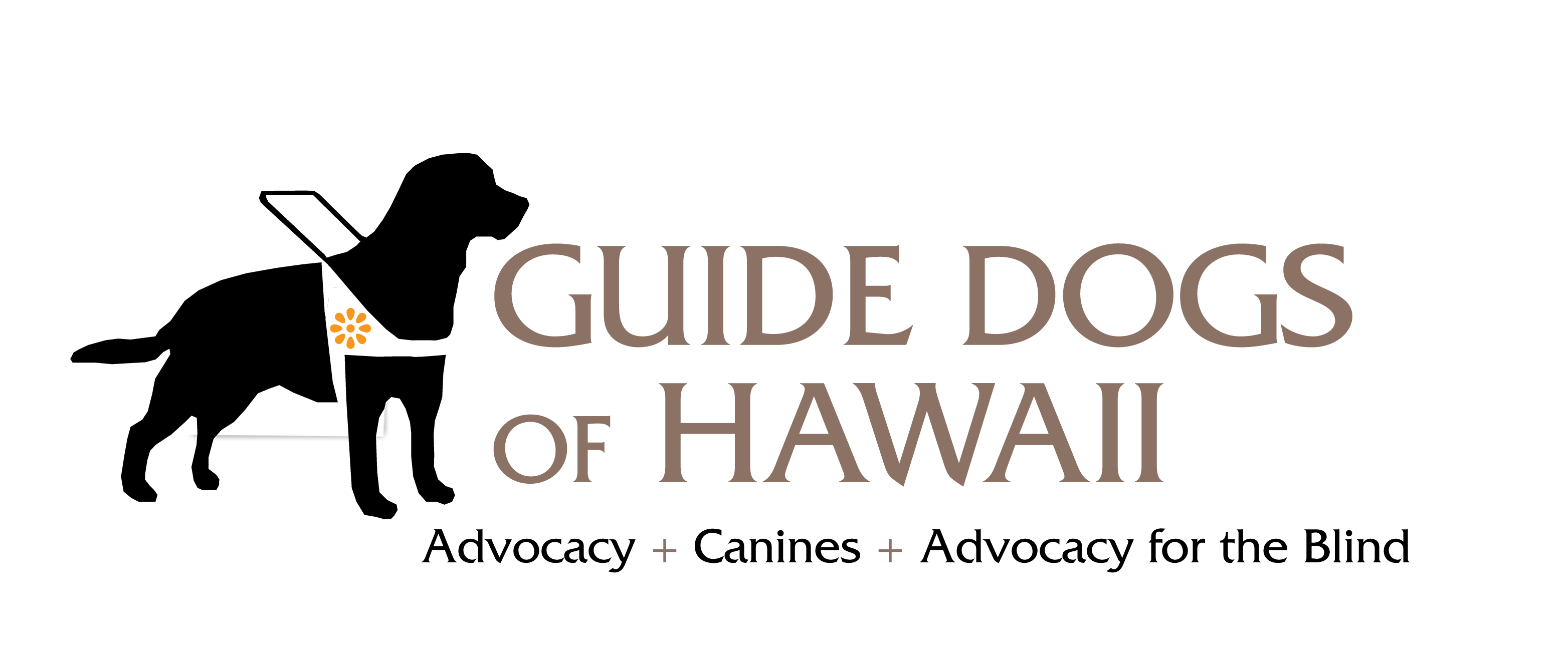 Guide Dogs of Hawaii: Adaptive Aids, Canines and Advocacy for the Blind