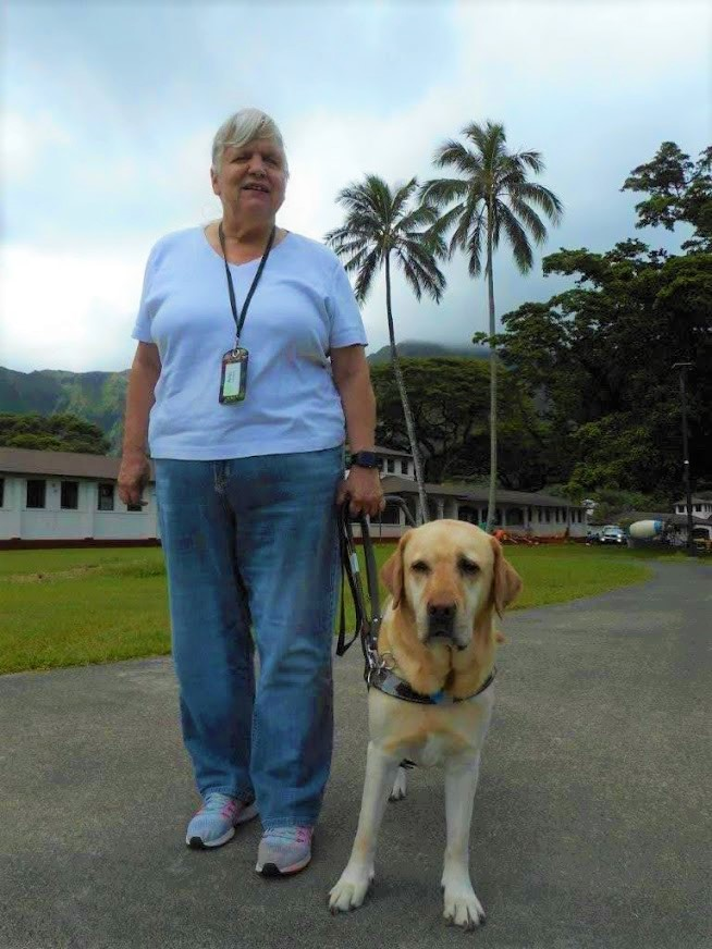 An older woman stands on a sidewalk with her yellow labrador guide dog.