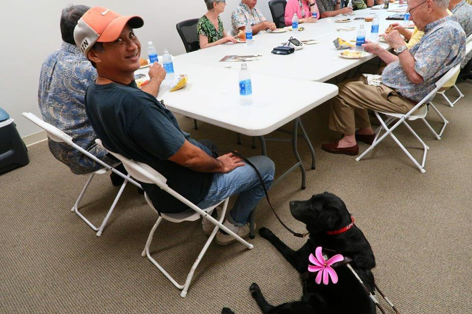 A group of people sit around a lunch table. A black labrador guide dog wearing a pink flower is looking up at her handler, as her handler looks over his shoulder at the camera.
