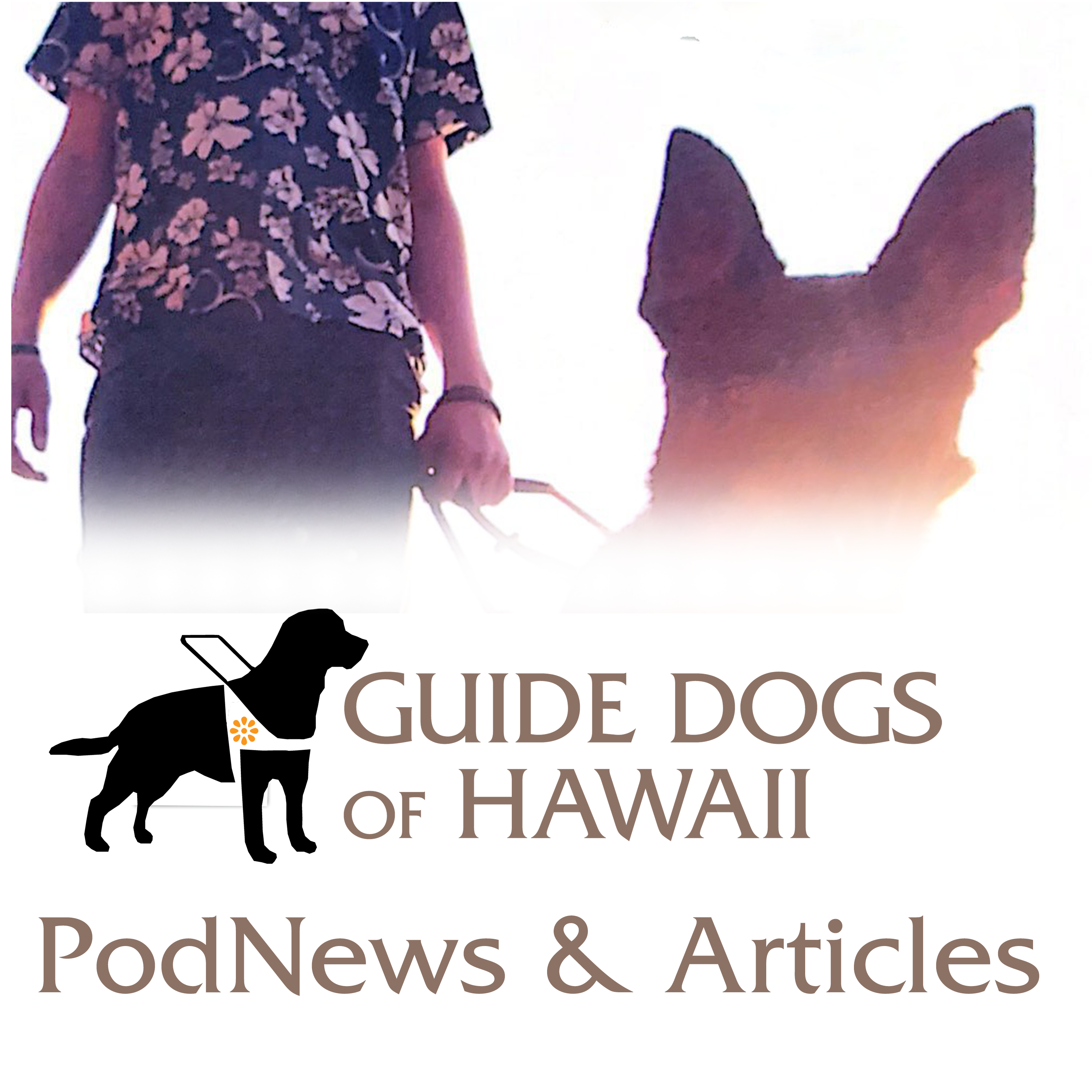 Guide Dogs of Hawaii VoiceNews & Articles